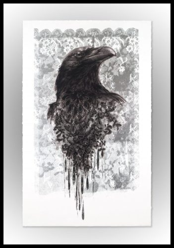 Crow by Shannan Gia