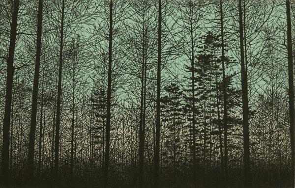 Forest (green) by Tokuro Sakamoto at