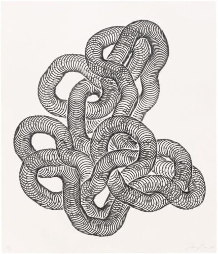 Untitled (matrix 2) by Tara Donovan