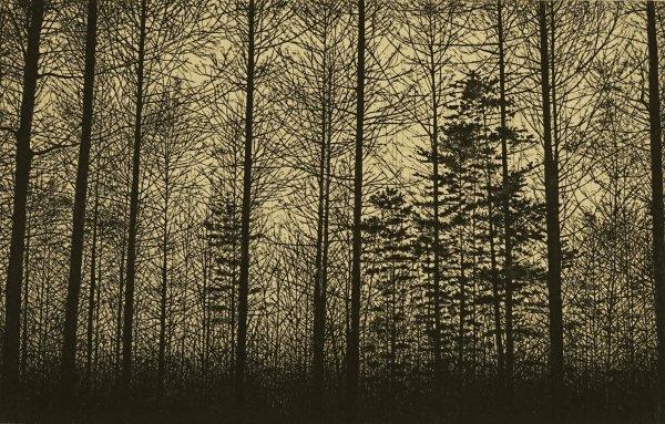 Forest (gampi) by Tokuro Sakamoto at