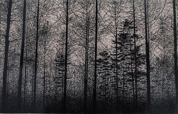 Forest (pink) by Tokuro Sakamoto at