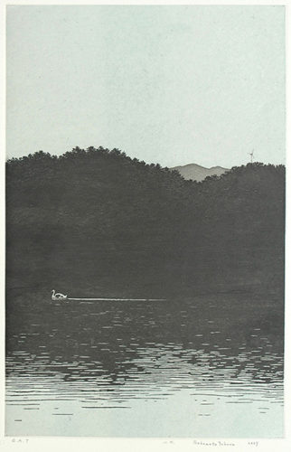 Mountain And Water by Tokuro Sakamoto