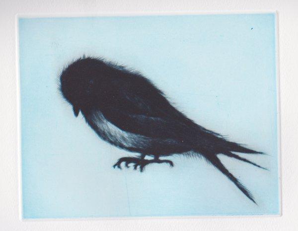 Swallow by Tomoko Konoike at