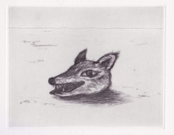 The Head Of Wolf by Tomoko Konoike at