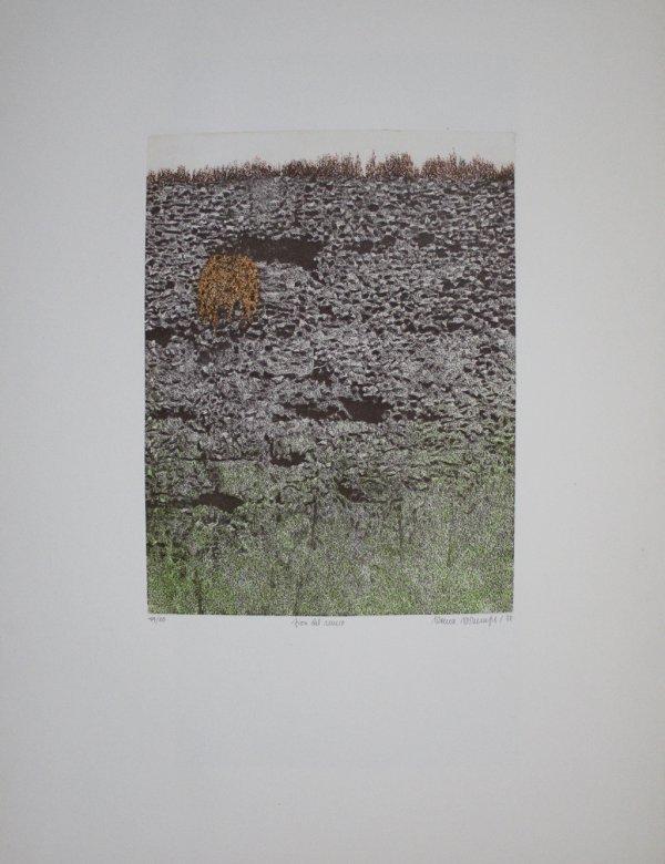 Fiori Le Mura by Verena Vernunft