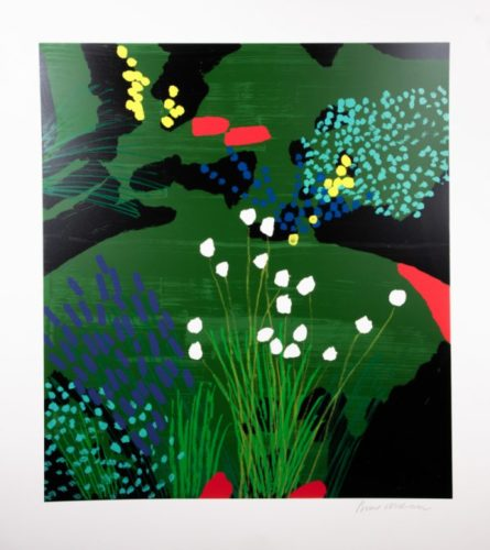 Lindheimer's Beeblossom by Bruce McLean