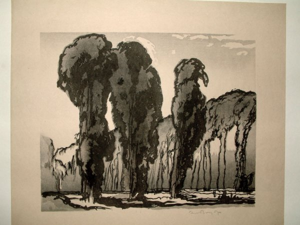 Trees by Frank Brangwyn at