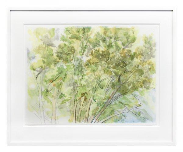 Pin Oak Crown by Sylvia Plimack Mangold