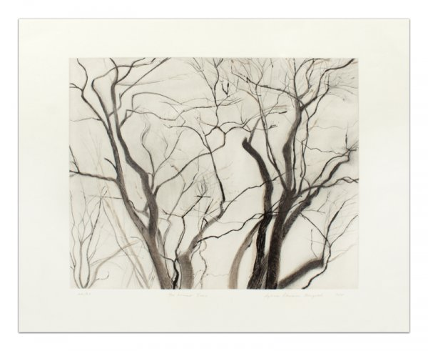 The Locust Trees, State Ii by Sylvia Plimack Mangold