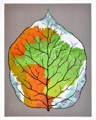 """brazilian Rainforest"" by Hiroki Morinoue"