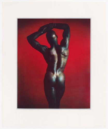 Untitled #1 From The Ken Moody Portfolio by Robert Mapplethorpe at