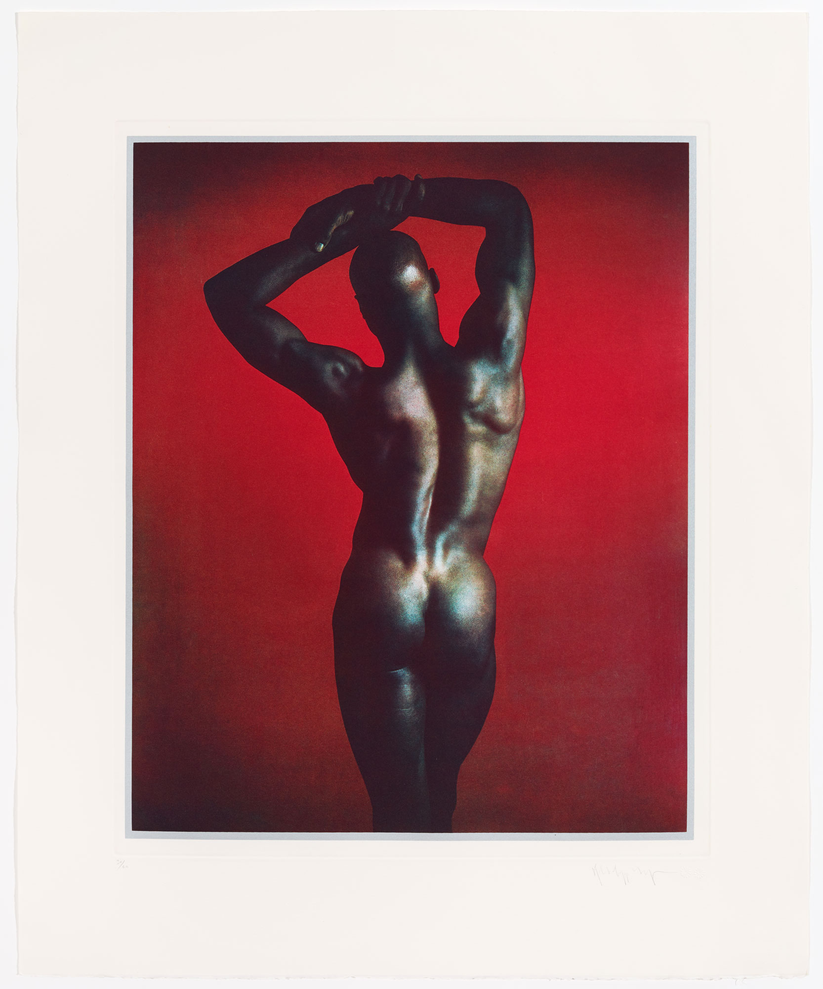 Untitled #1 From The Ken Moody Portfolio by Robert Mapplethorpe