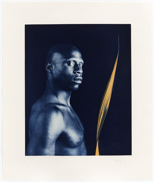 Untitled #4 From The Ken Moody Portfolio by Robert Mapplethorpe