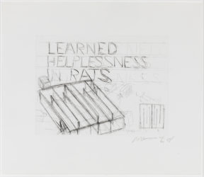 Learned Helplessness In Rats by Bruce Nauman at