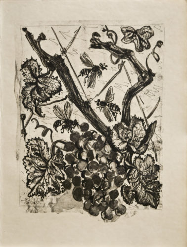 La Guêpe (the Wasp) by Pablo Picasso