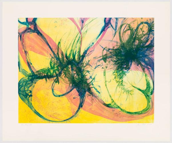 Mimosus Soli by Janaina Tschape