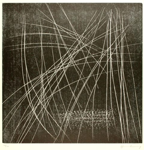 H-15-1973 by Hans Hartung at