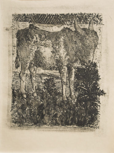 L'ane (the Donkey) by Pablo Picasso