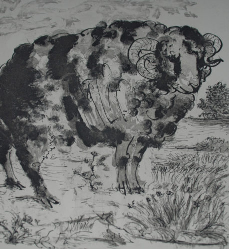 Le Belier (the Ram) by Pablo Picasso