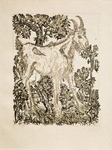 La Chèvre  (the Goat) Bloch 335 by Pablo Picasso