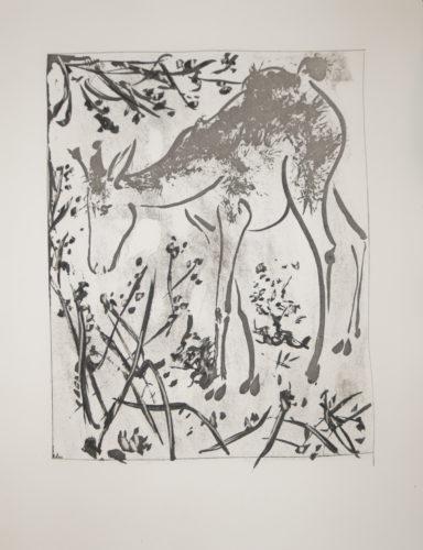 La Biche (the Stag) Bloch 336 by Pablo Picasso
