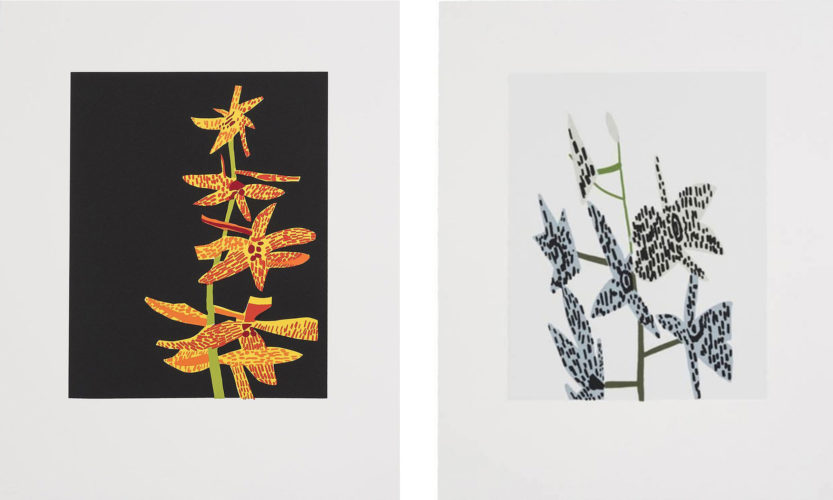 Untitled (Orchid 1 & 2) by Jonas Wood