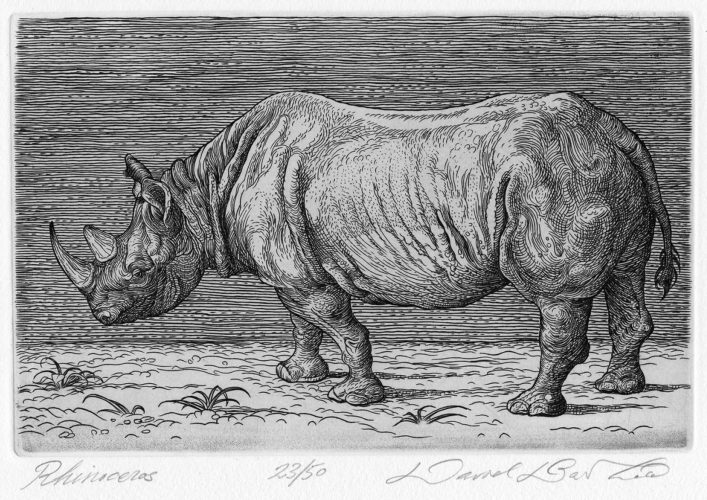 Rhinoceros by David Barthold