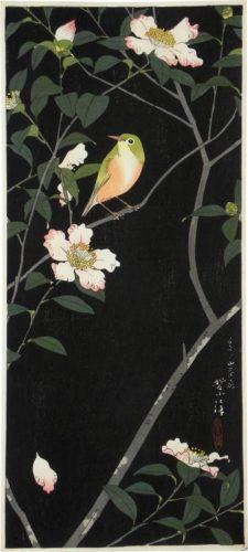 Japanese White-eye And Camellia by Kasamatsu Shiro