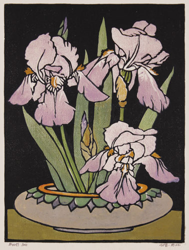 Bert's Iris by William Seltzer Rice at