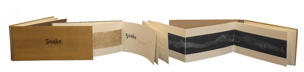 Snake by Judith Rothchild