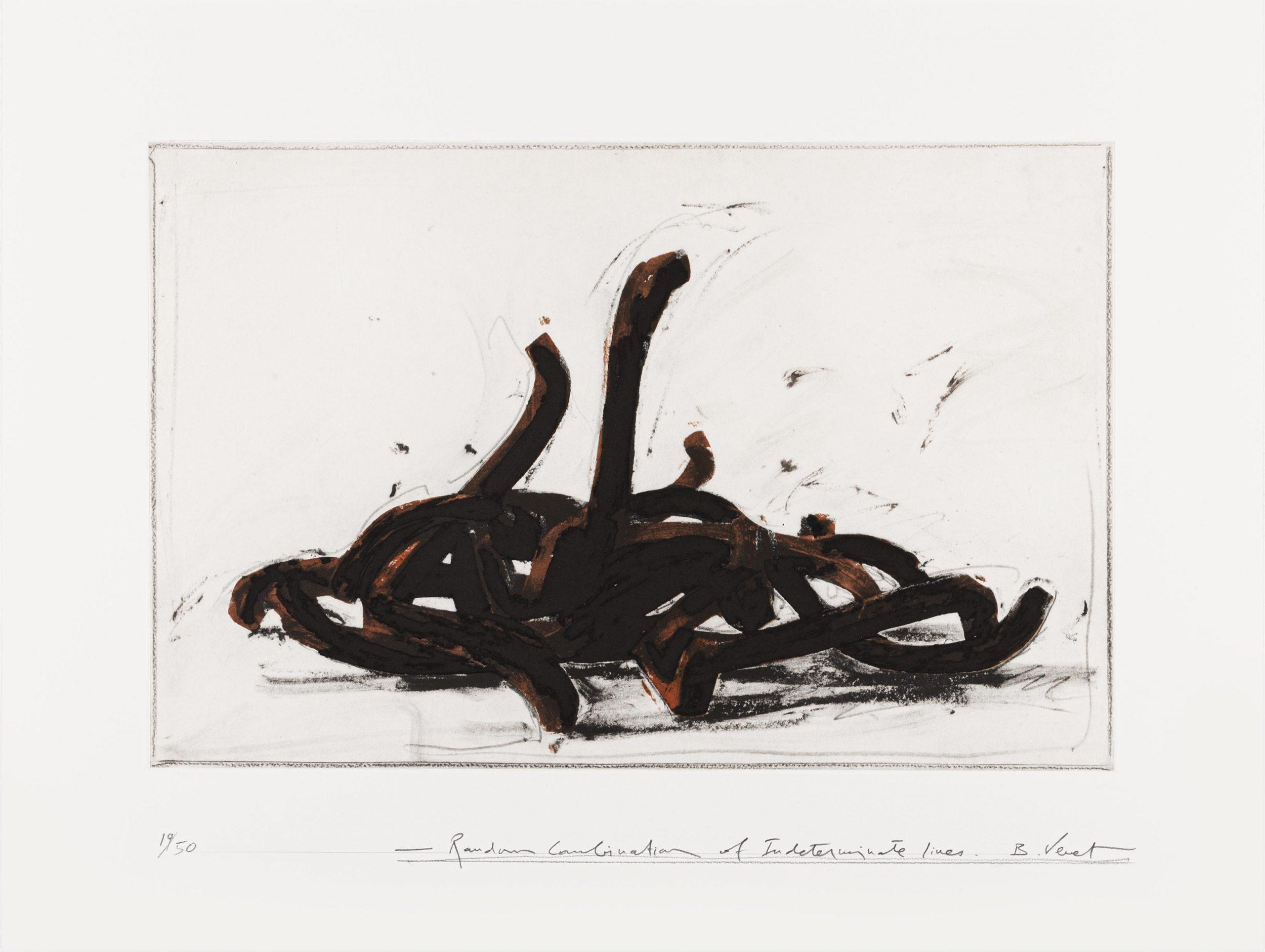 Random Combination Of Indeterminate Lines 03 by Bernar Venet