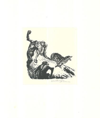 Affen Jagen Den Wolf by Walther Klemm