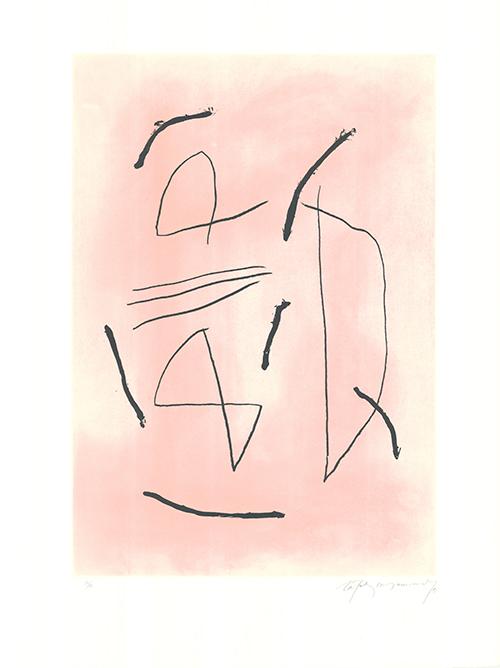 Signe I Color 4 by Albert Rafols-Casamada