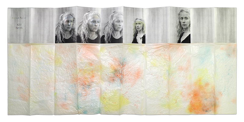 Color Noise by Kiki Smith