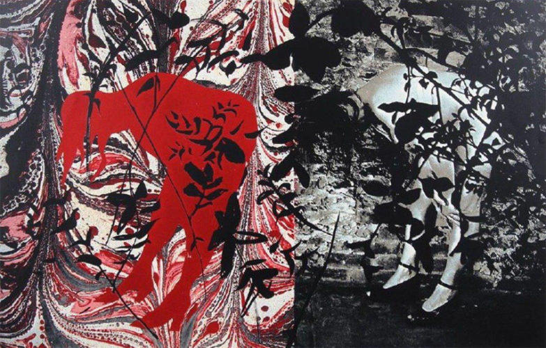 Eye And Camera: Red And Black by John Piper at