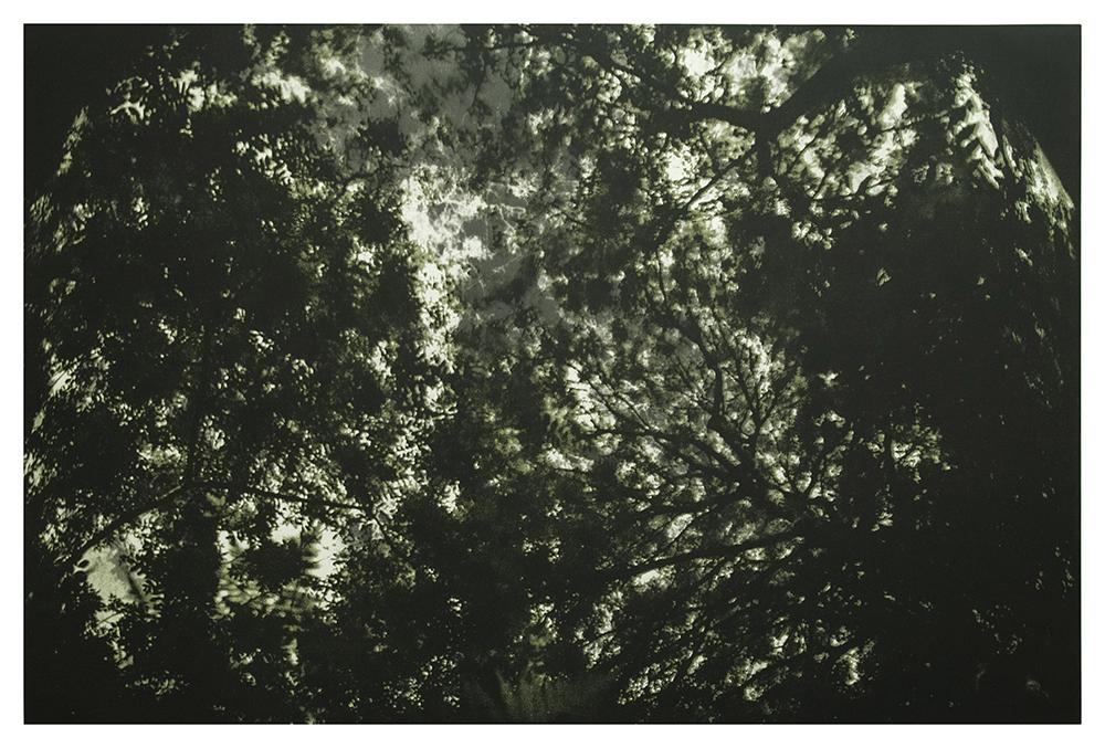 'aqua Oscura'  Autumn by James Turrell
