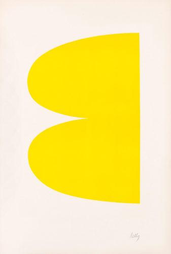 Yellow by Ellsworth Kelly