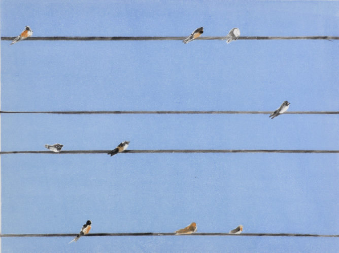 Birds on Wire by Sari Davidson at