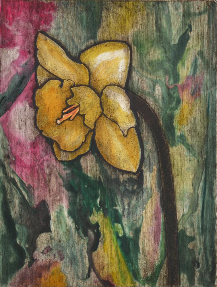 Daffodil 4 by Sari Davidson