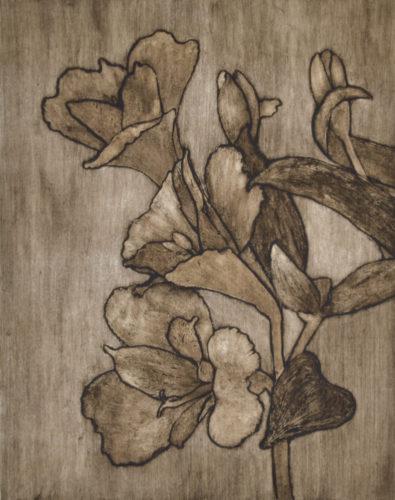 Daylillies by Sari Davidson
