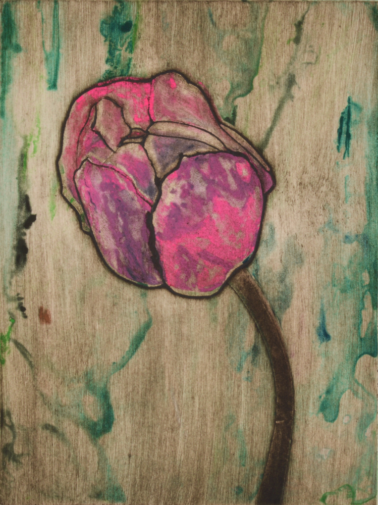 Pink Tulip 6 by Sari Davidson
