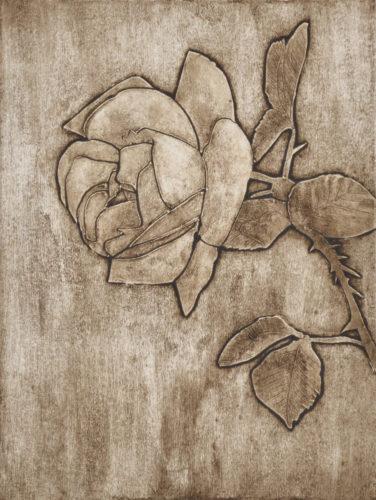 Rose 4 by Sari Davidson