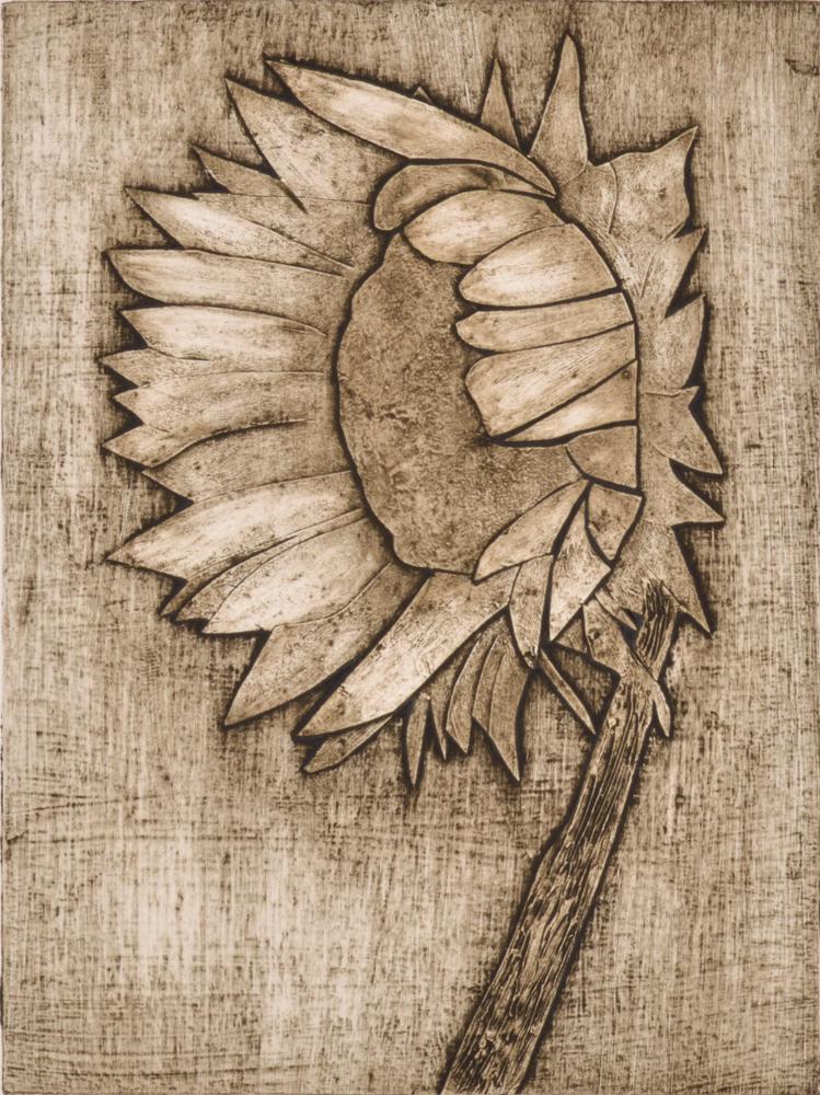Sunflower 2 by Sari Davidson