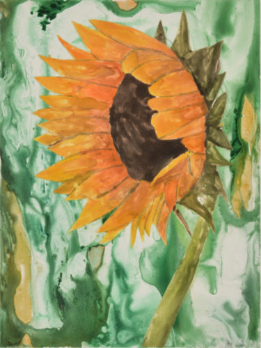 Sunflower 3 by Sari Davidson