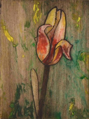 Yellow Tulip 4 by Sari Davidson