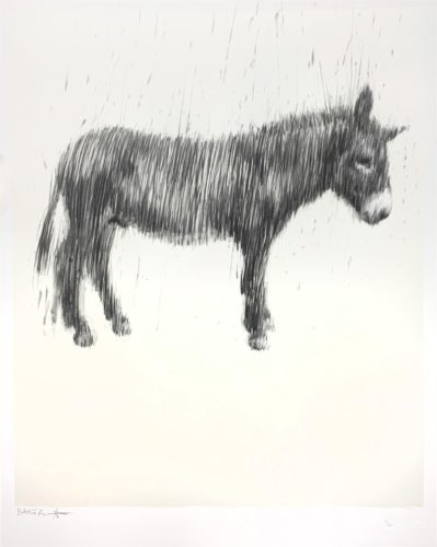 Graphie Unicorn (Over Looking The Things We Have For The Things We Have Not) by Charming Baker