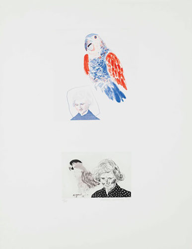 My mother with parrot by David Hockney