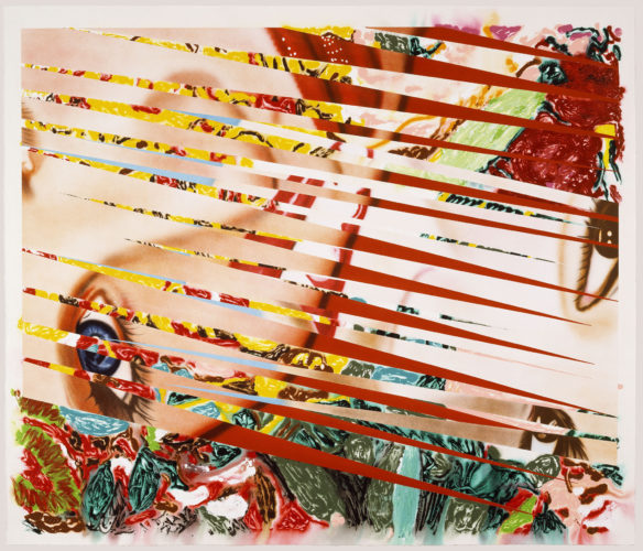 Flowers and Females by James Rosenquist