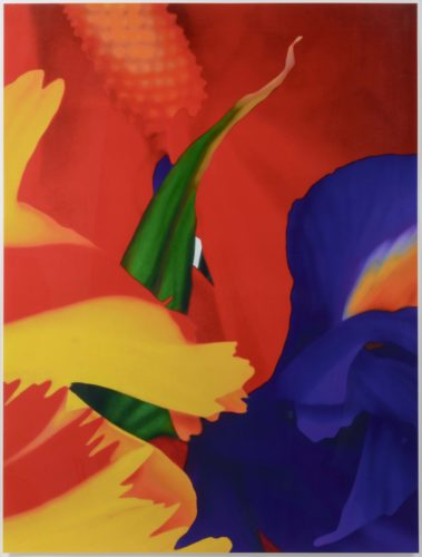 Portraits of Landscapes 1 by Marc Quinn at