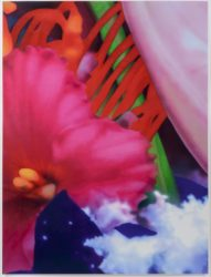 Portraits of Landscapes 5 by Marc Quinn at